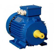 Электродвигатель асинхронный 4АМУ250M6 55 кВт 1000 об / мин